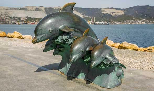 delfiny-novorossiysk