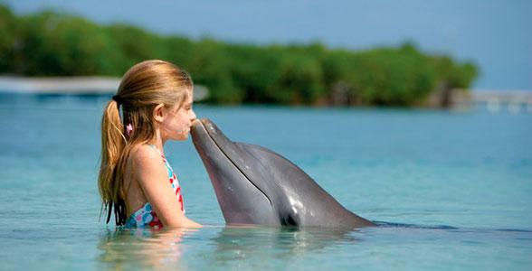 devochka-delphin