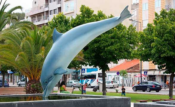 setubal-dolphin